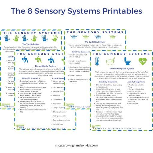 photograph relating to Printable Guides named The Sensory Method Printable Textbooks